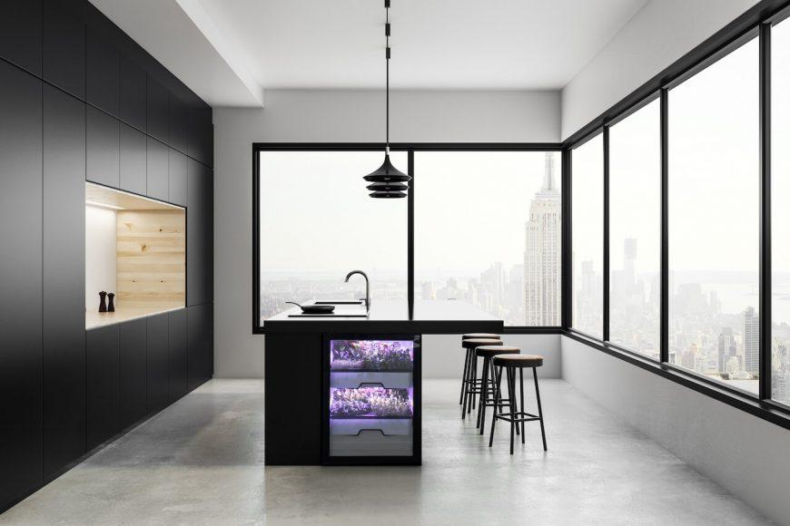 Das Münchner Start-up Agrilution entwickelte den Plantcube, einen Indoor-Gewächsschrank für die eigene Küche.